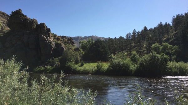 The Poudre River about to join the North Fork.